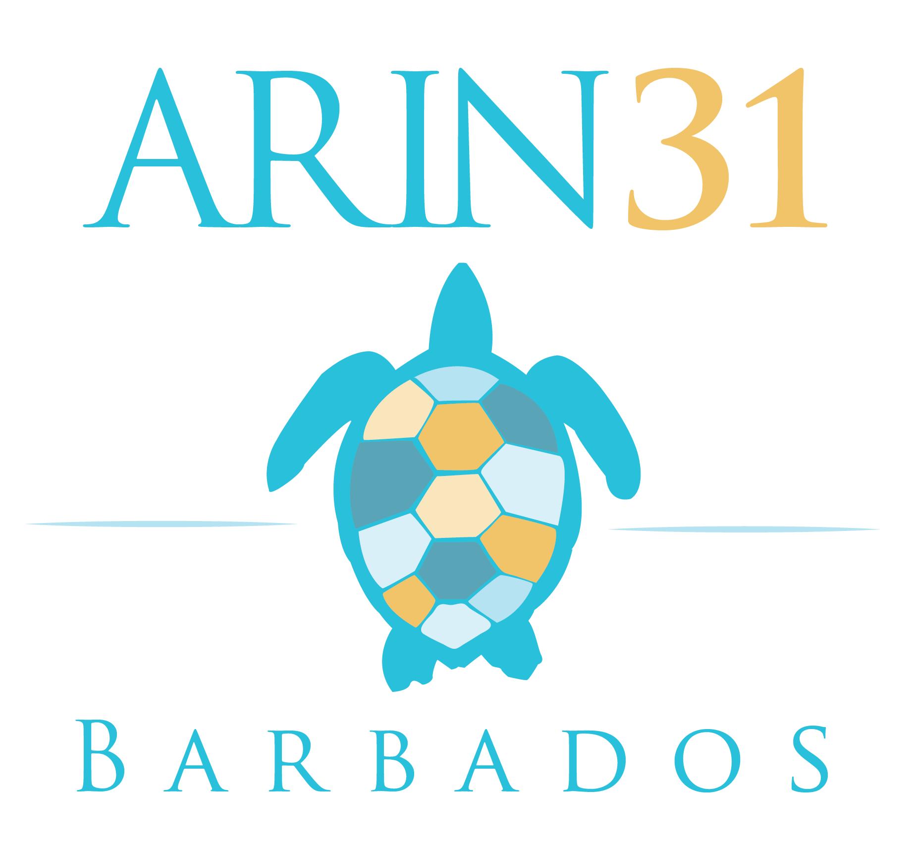 ARIN 31